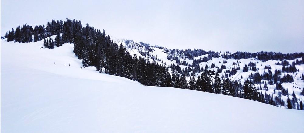 Ridges, tree lines, peaks, valleys