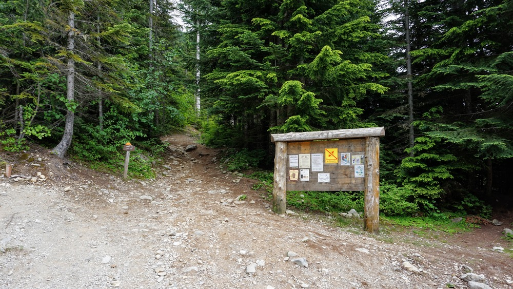 Summit Lake Trailhead