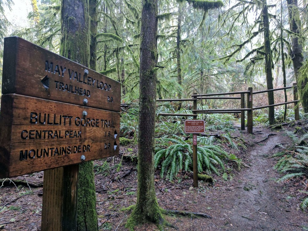 Squak Mountain State Park 09 - Pacific North Wanderers.jpg