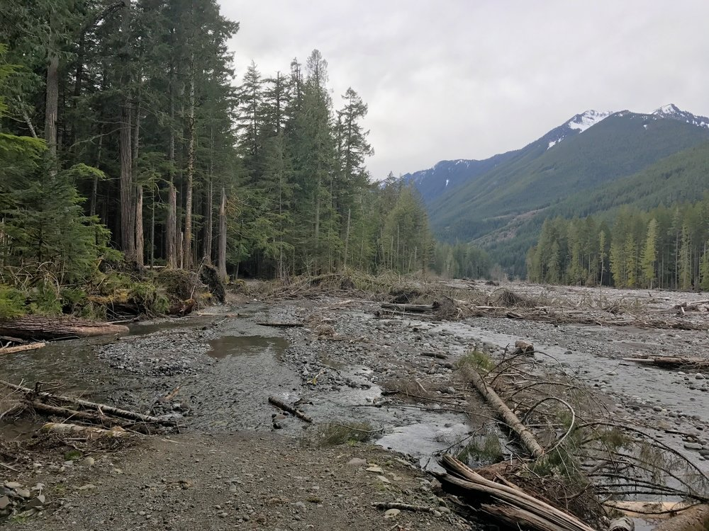 Biking the Carbon River Road