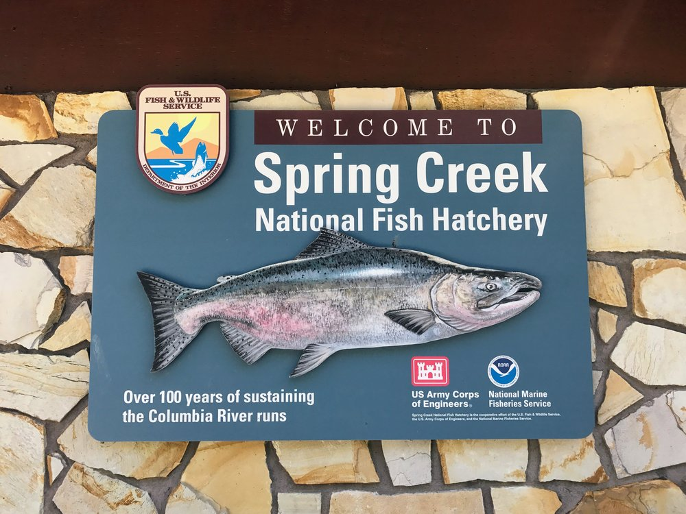 Spring Creek Hatchery