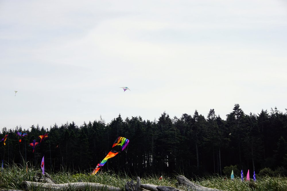 Kite Festival on Whidbey Island