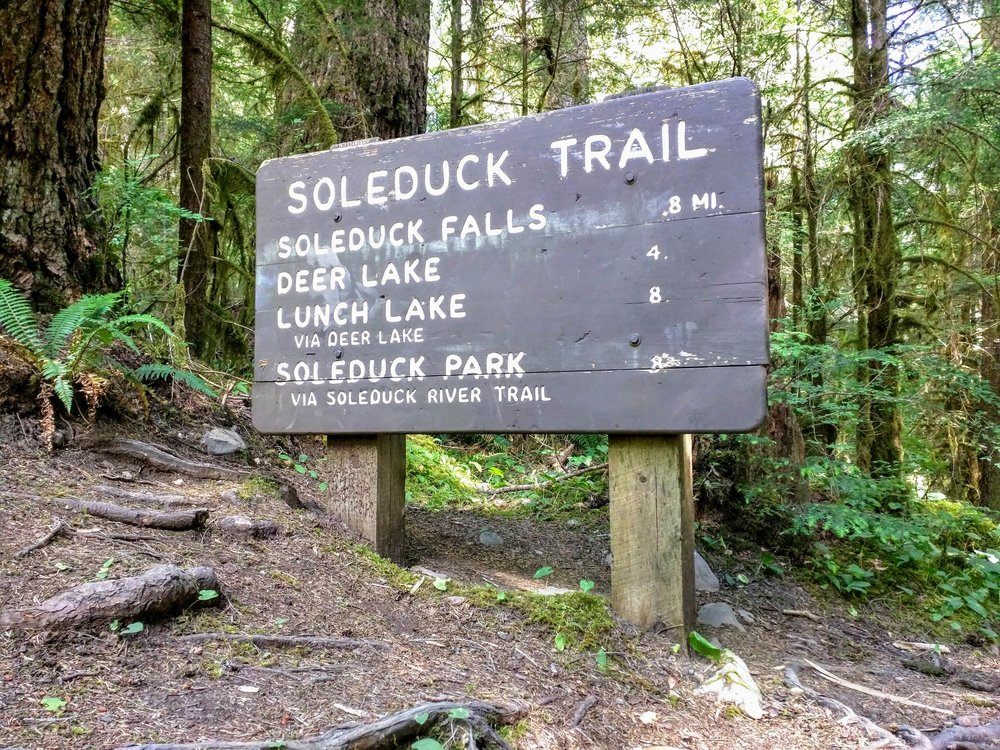 Soleduck Trail.  Photo by Brandon of  Pacific North Wanderers