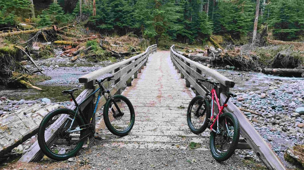 Biking on Carbon River Road - Pacific North Wanderers.jpg