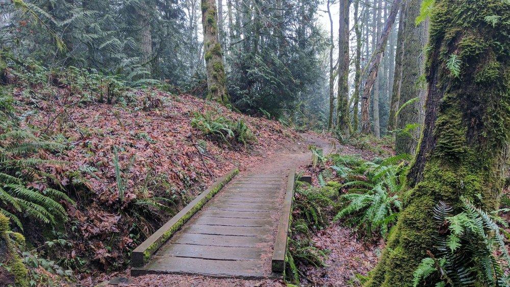 Bullitt Gorge Trail - Pacific North Wanderers.jpg