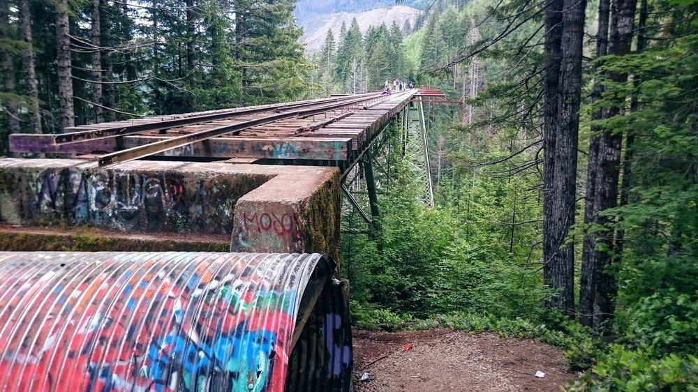 Vance Creek Bridge - Pacific North Wanderers.jpg