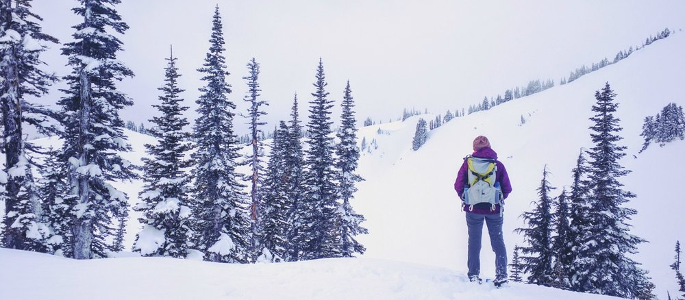 Snowshoeing in Paradise - Pacific North Wanderers.jpg