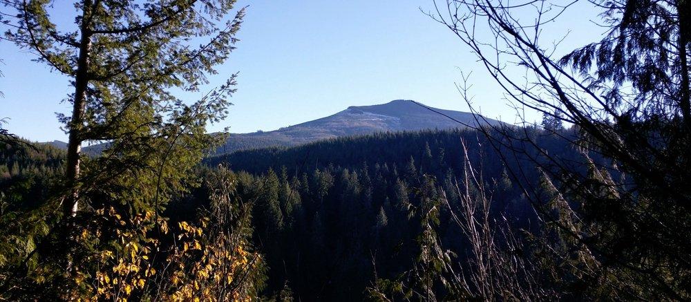 Mud Mountain Rim Trail - Pacific North Wanderers.jpg