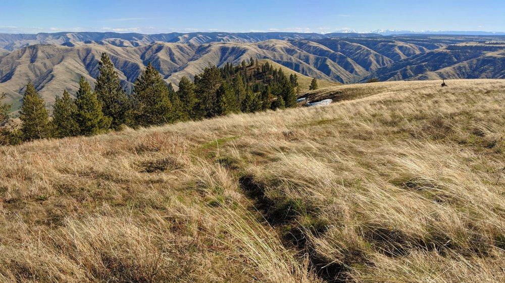 Fields Spring State Park - Puffer Butte.jpg