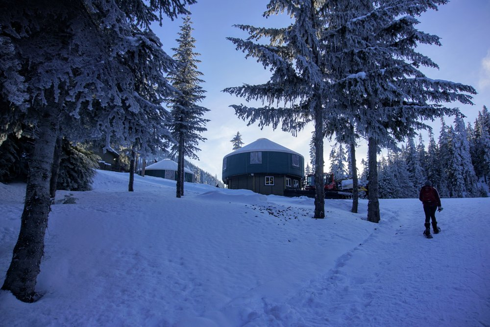 Returning to the yurt at White Pass Nordic Center.JPG
