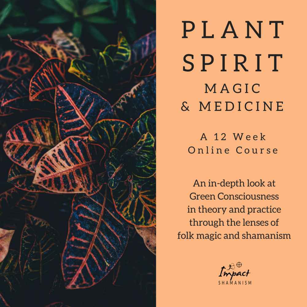 Plant Spirit Magic & Medicine.png