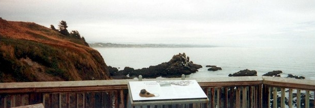 Overlooking Yaquina Tide Pool Area