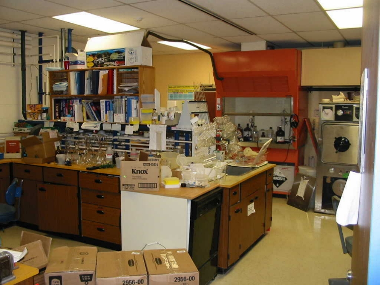 "A ""real"" working science laboratory"