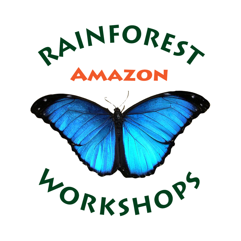 Amazon Rainforest Workshops