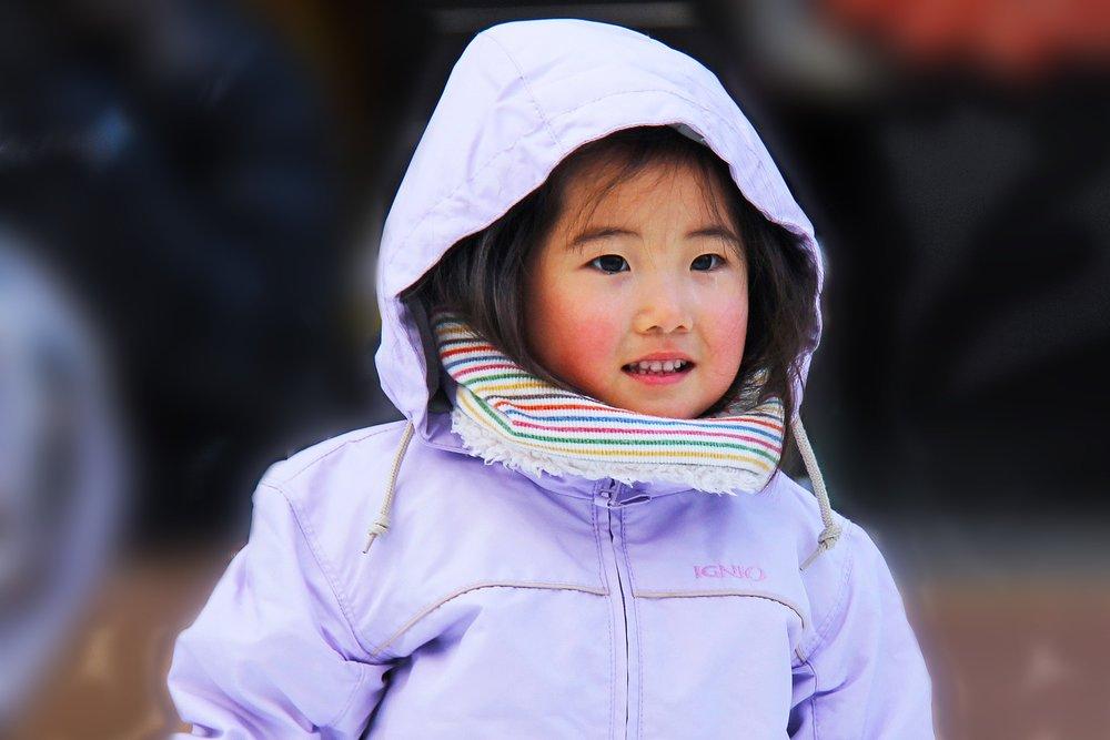 cute-1711129_1920.jpg