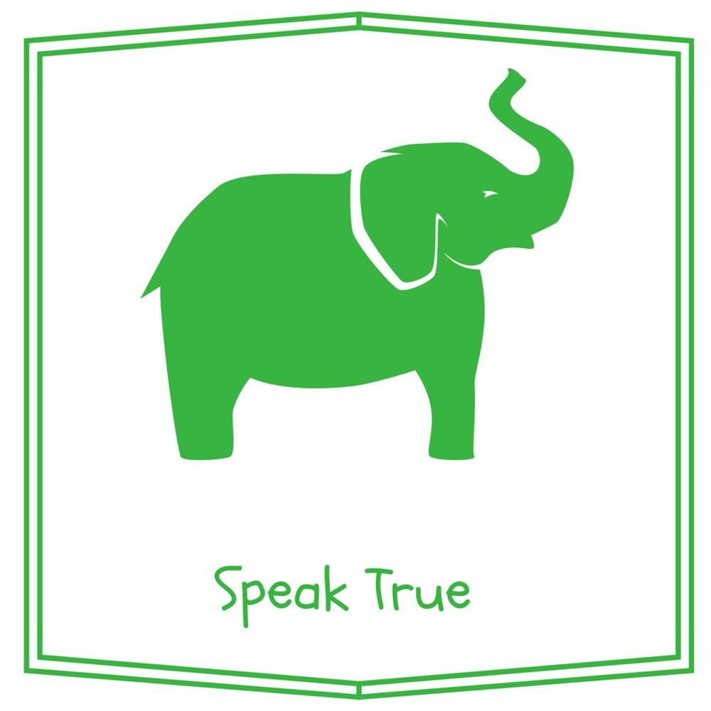 Story Wise: Speak True program.png