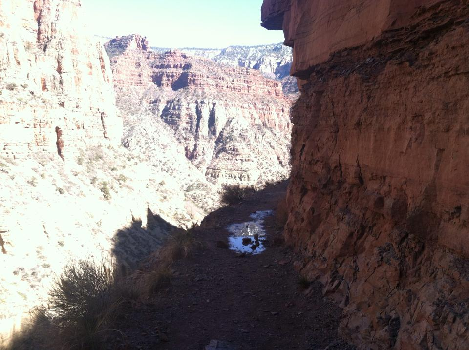 A reminder that reflections can show us hidden truths, courtesy of the Grand Canyon.