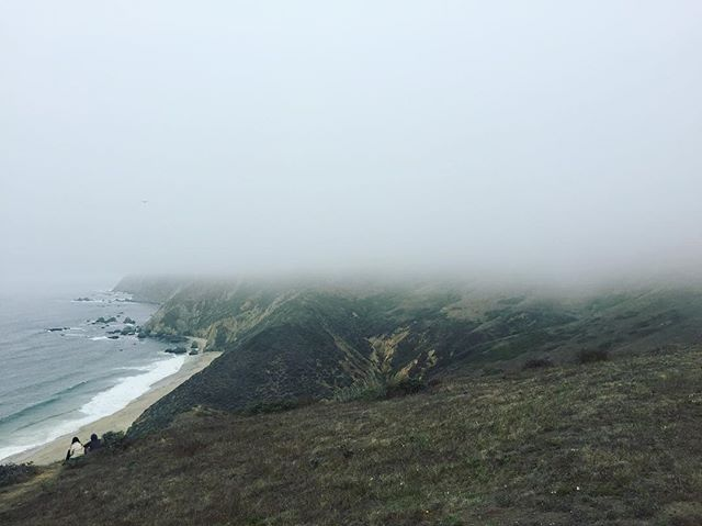 Point Reyes - foggy day 🍃🌫