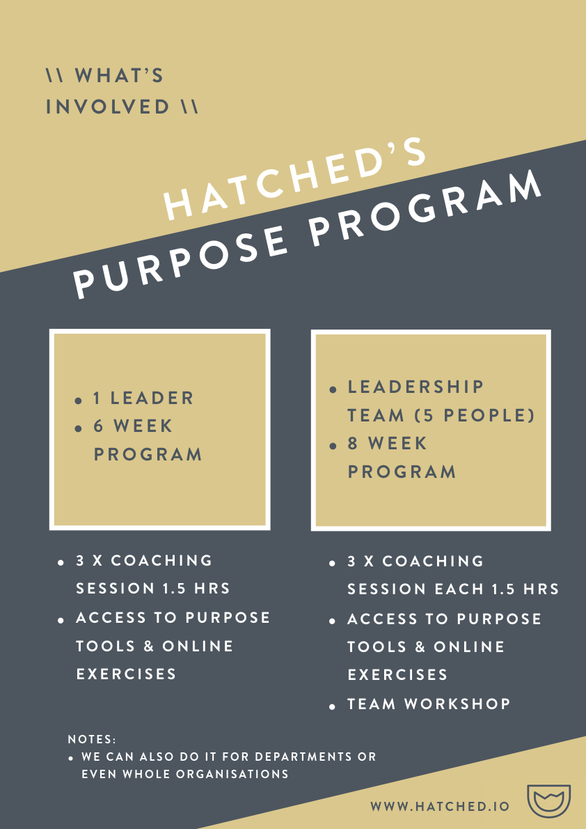 Individual Purpose Journey - Hatched - no price.003.jpeg
