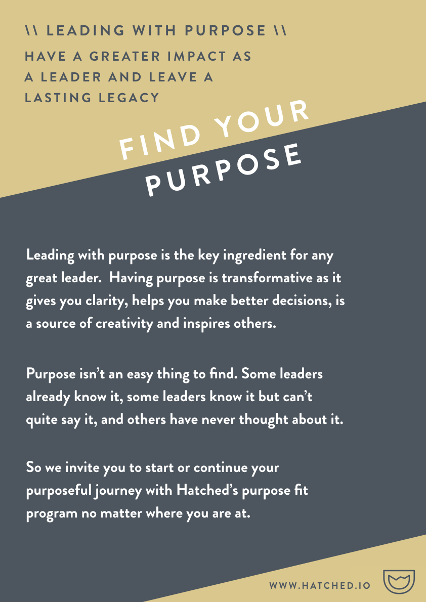 Individual Purpose Journey - Hatched - no price.001.jpeg