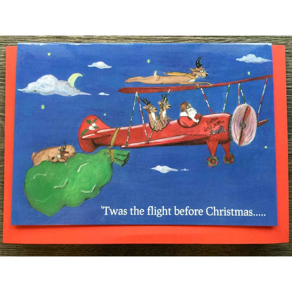 christmas cards 10 pack bulk special - Airplane Christmas Cards