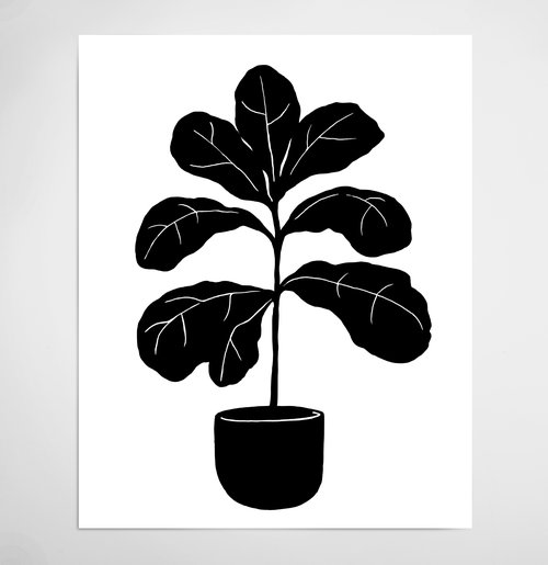 fiddle+fig+print+ecom.jpg