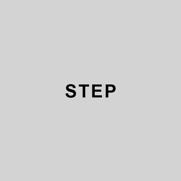step.jpg