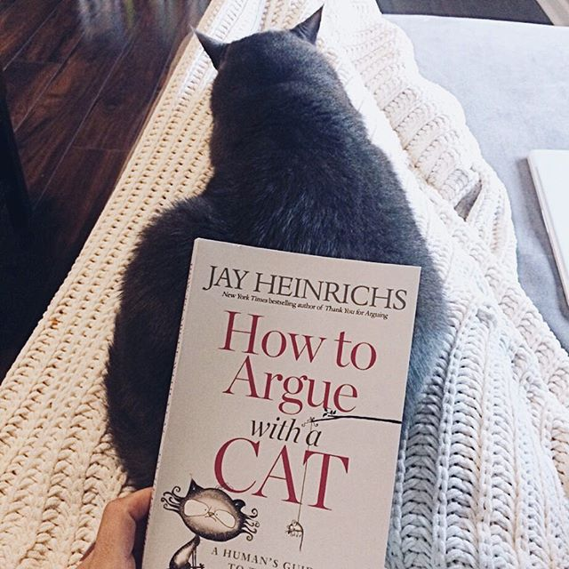 """I'm reading Jay Heinrichs new book on rhetoric, """"How to Argue with a Cat"""" while I have a cat on my lap. It doesn't get more perfect than that. Happy Sunday!  #amreading #rhetoric #highschoolela #iteachhighschool #iteachhighschoolenglish #bookstagram #catstagram #readinglife #lazysunday #catcuddles #writelife #teachersofinstagram"""
