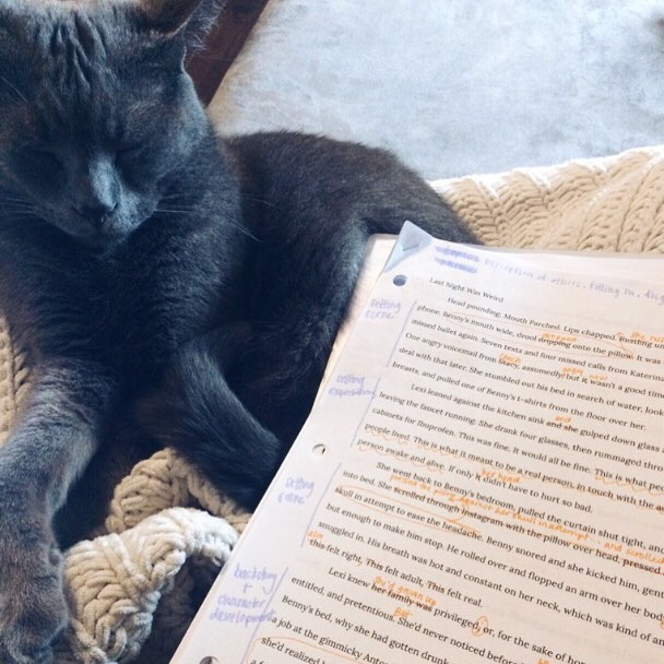 Happy Sunday morning! I'm writing and revising this morning with cuddle support from my critique partner. It's time to get this short story in  shape!  What are you writing this morning?  #amwriting #amrevising #siroscargray #writersofig #writersofinsta #writelife #shortstory #revision #womenwritersofinstagram #catcuddles #editing #writewritewrite