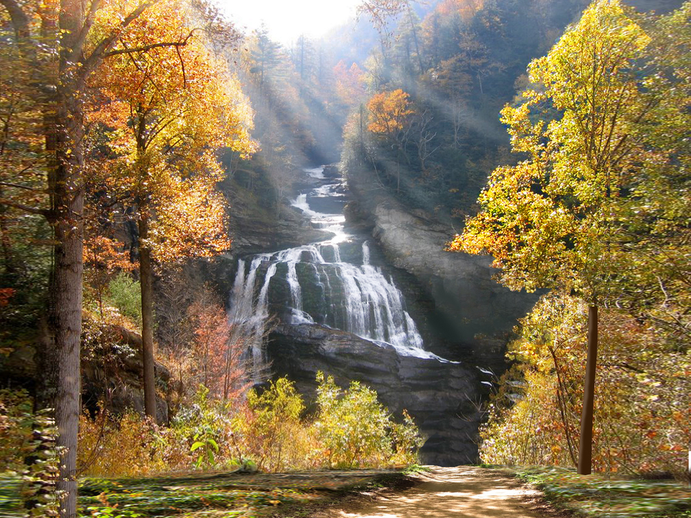 This is what I am painting...Cullasaja Falls, North Carolina.