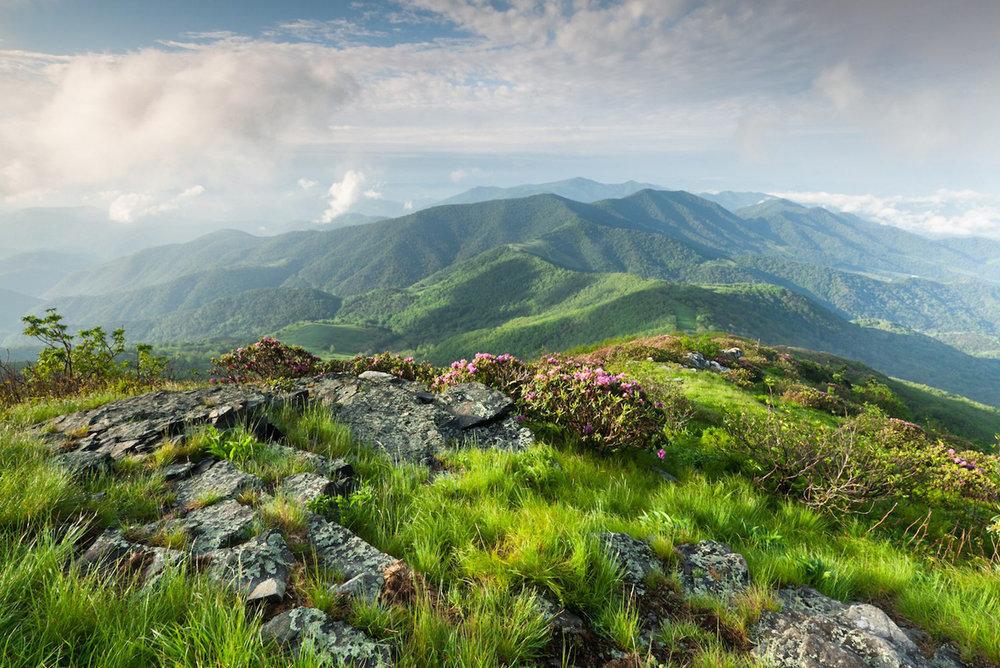 Roan-Mountain.jpg