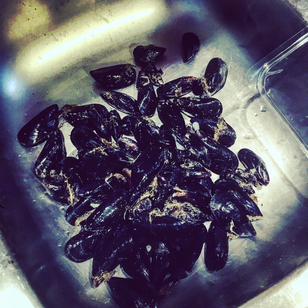 The first batch of mussels.. getting my scrubs on