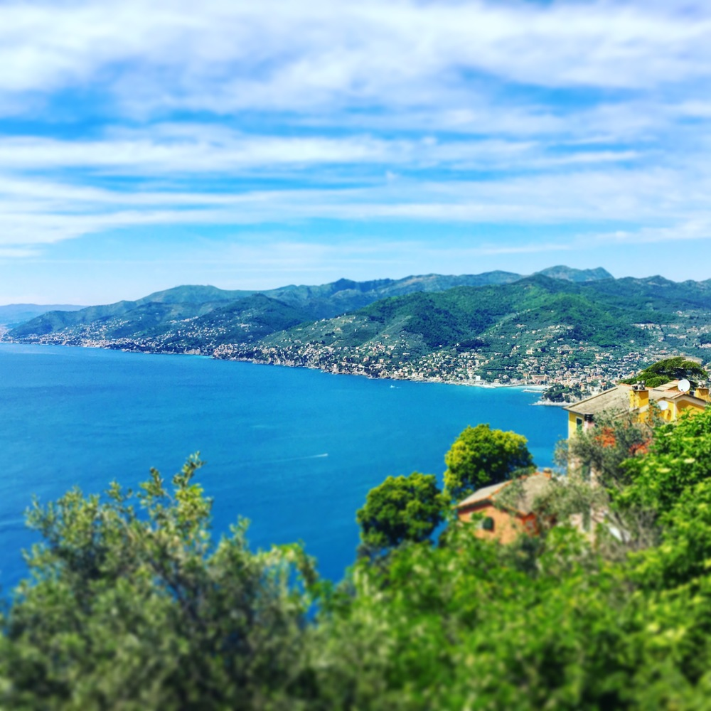 Views of Liguria's rather rugged coastline from San Rocco