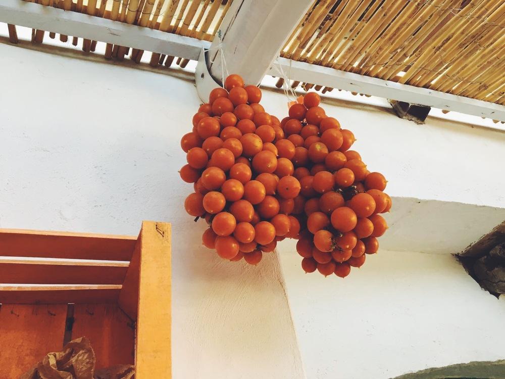 Masseria Agriturismo