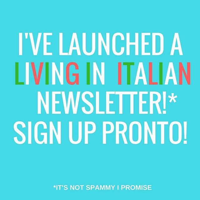 Hello you lovely lot! I'm finally starting a newsletter and I'd love for you to sign up! I have no special prizes at the moment but I can promise you it will (probably/hopefully!) prove useful - tips, guides, reviews and recipes! What's not to love?! Link in bio! ☝️