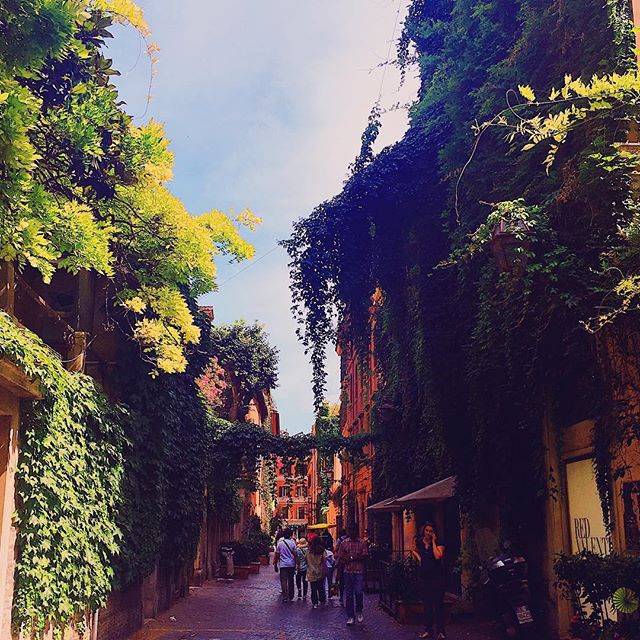 Looking for an exceptionally pretty street in Rome for your perfect 'I'm so stylish and nonchalant' instagram post?  Via Margutta- located between the Spanish steps and the Piazza del Popolo - is a short street with a long history. First an enclave for medieval artists and craftsmen, later home to the likes of Puccini and Debussy, it also famously featured in A Roman Holiday and was home to one of Italy's most prolific directors, Fellini (La Dolce Vita). And look at all that splendid ivy.