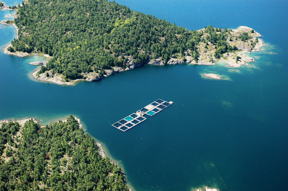 2009 Aerial CW Eastern Island.jpg
