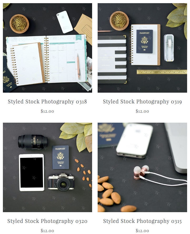 elah tree styled stock photography