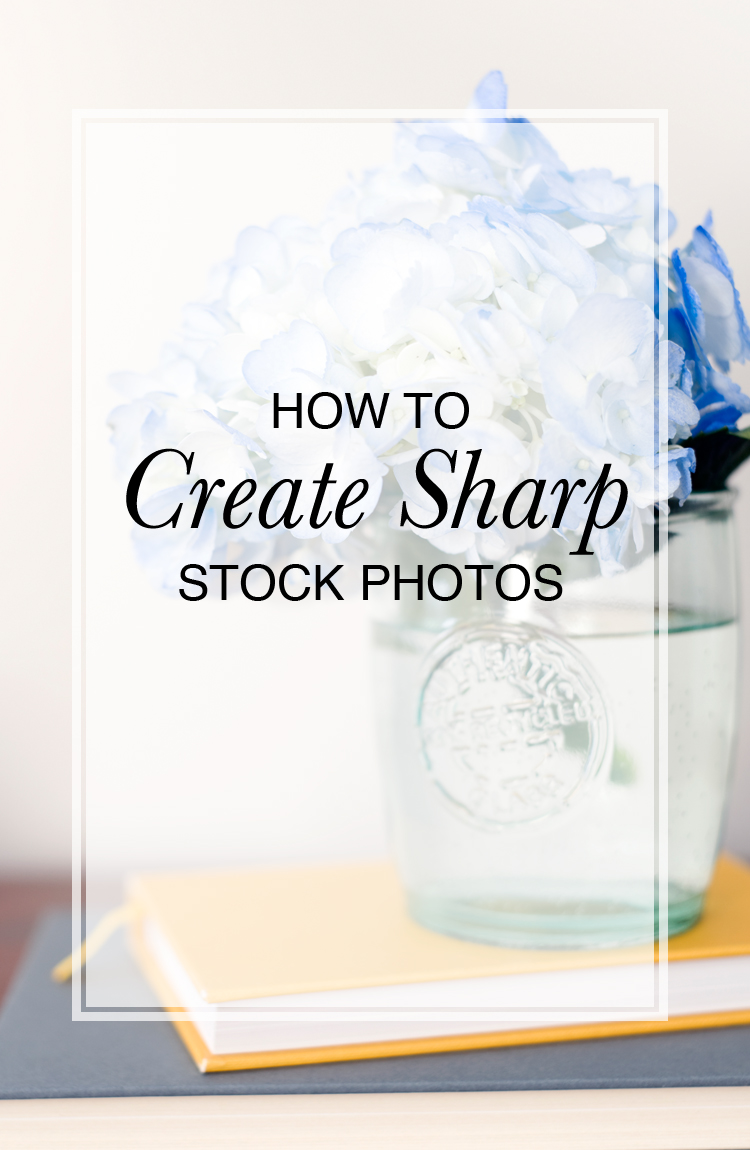elah-tree-styled-stock-photography-tips