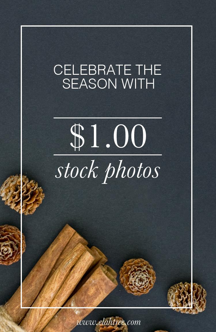 elah-tree-styled-stock-photography-one-dollar-01.jpg