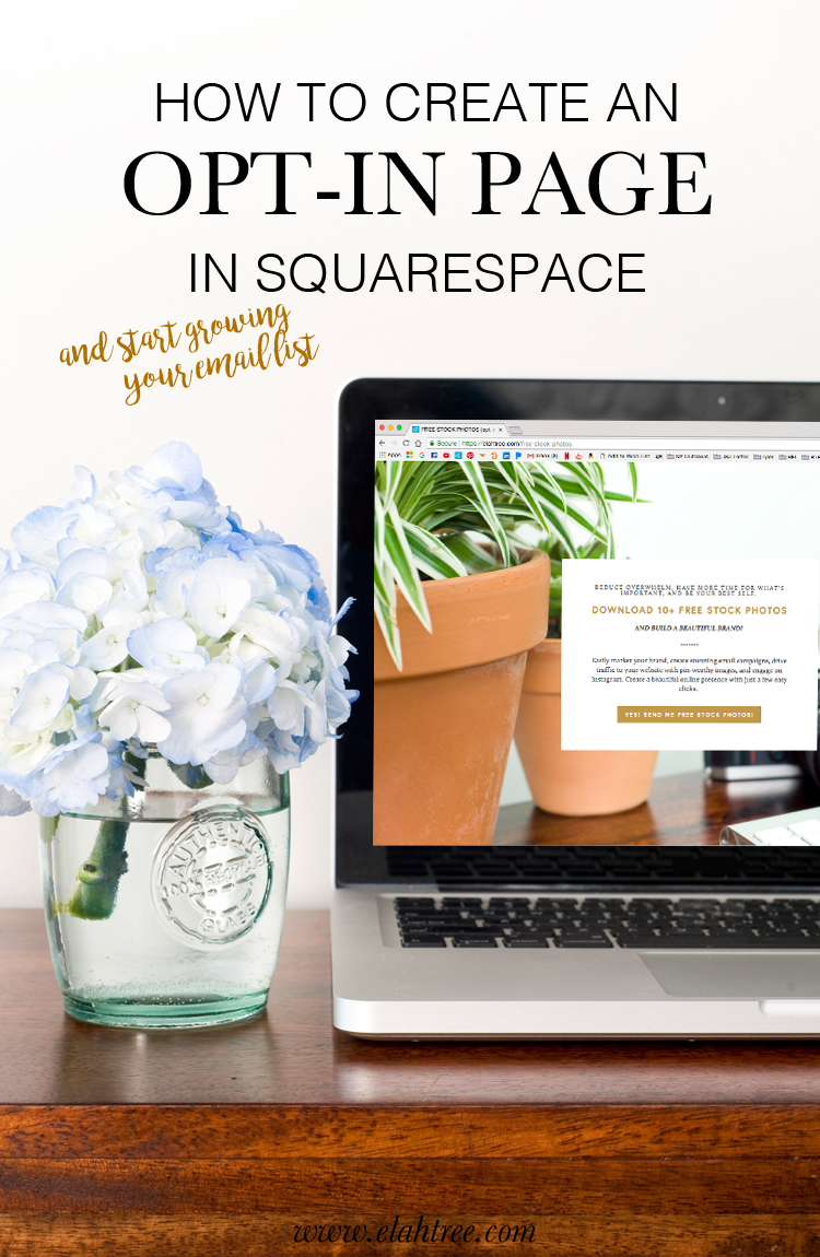 how-to-create-an-optin-page-in-squarespace.jpg