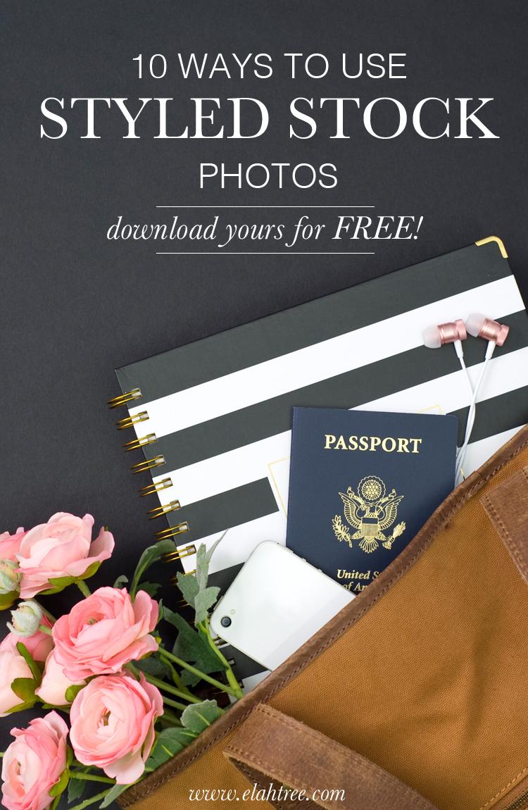 free-styled-stock-photos-elah-tree.jpg