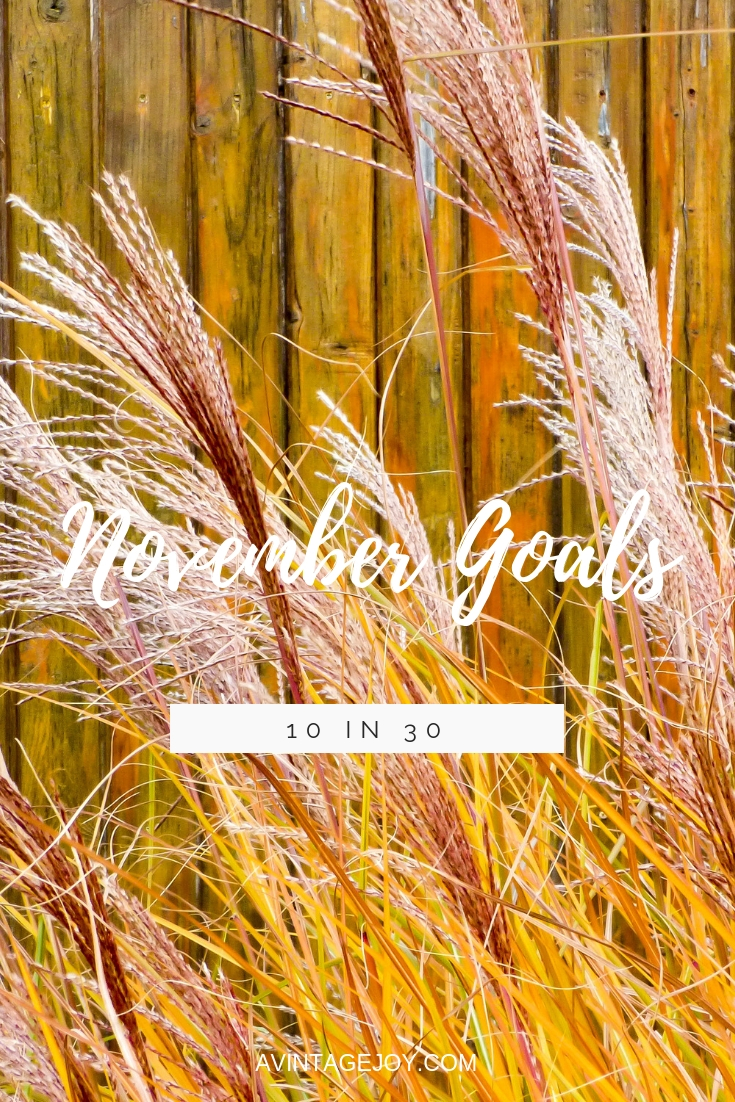 Goals keep your months on track. What are your goals for this month? These are mine!