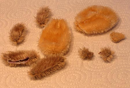 dyed teddy parts