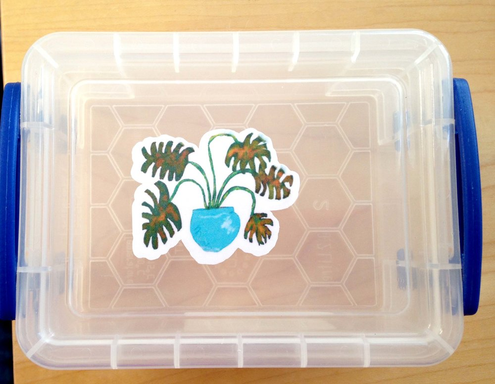 laminated sticker on plastic box showing paper dried after washing and slight bleeding of image around some of the edges