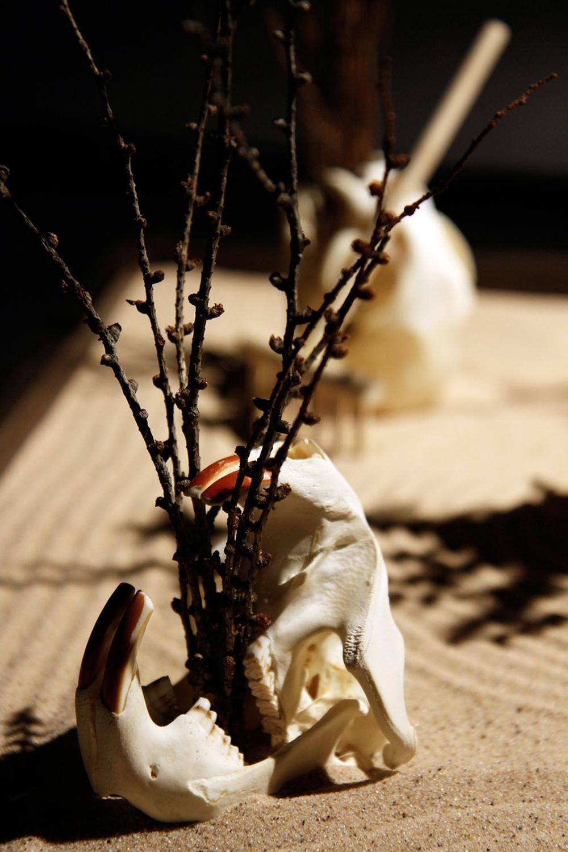 skulldetail1.jpg