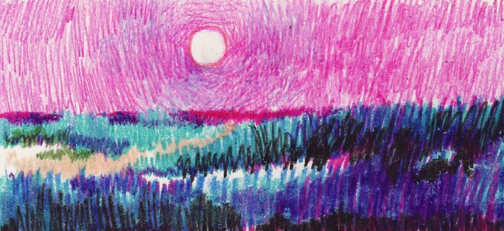 florida landscape 7.JPG