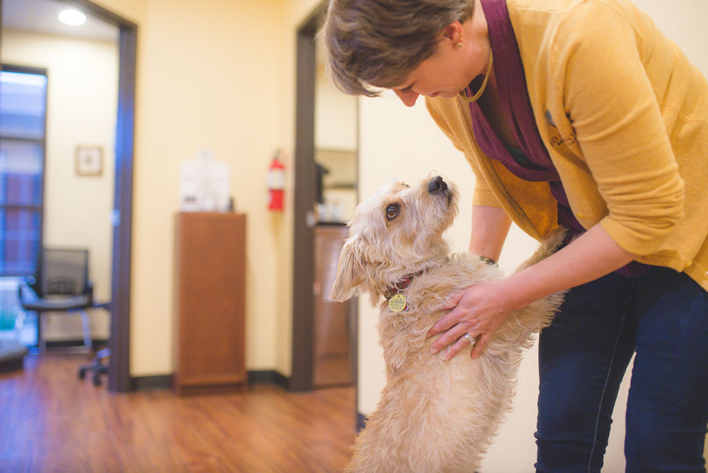 coco often greets patients. she is a rescue dog, very loving and still learning to trust in the goodness of strangers. (Sarah Hoag Photography)