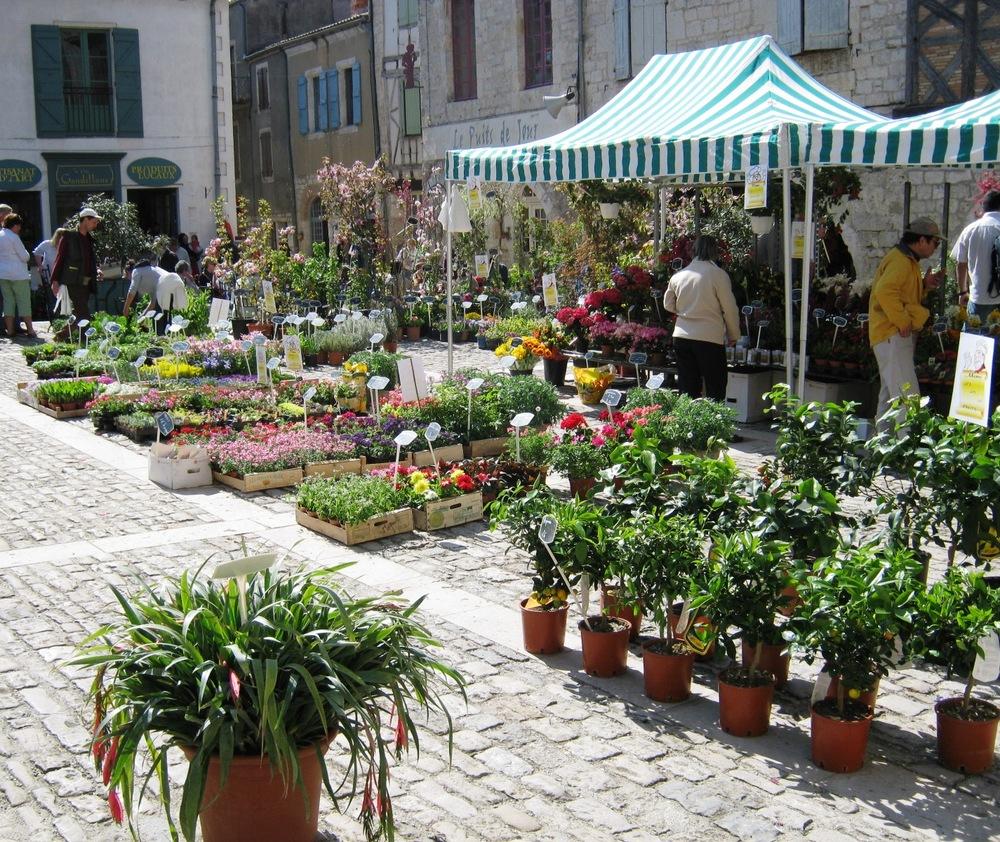 flower festival lauzerte 003.jpg