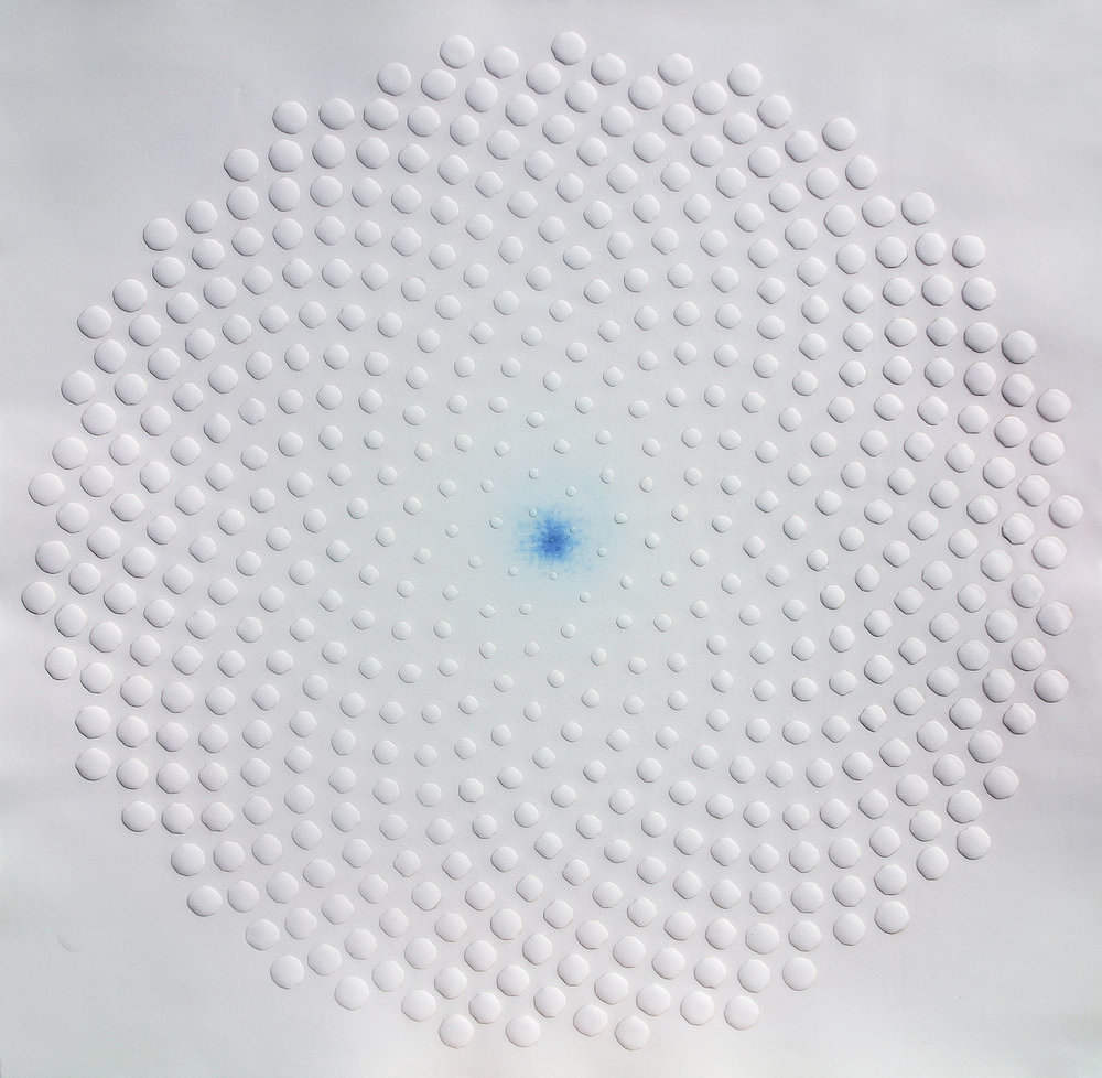 phyllotaxis 3